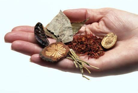 Suplement Herbal dan Penyakit (Gagal) Ginjal