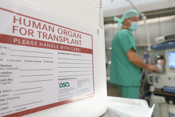 Bagaimana Tatalaksana Transplantasi Ginjal?